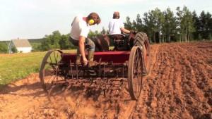 drill-seeding
