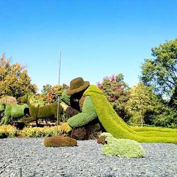 Landscaping Edmonton Companies